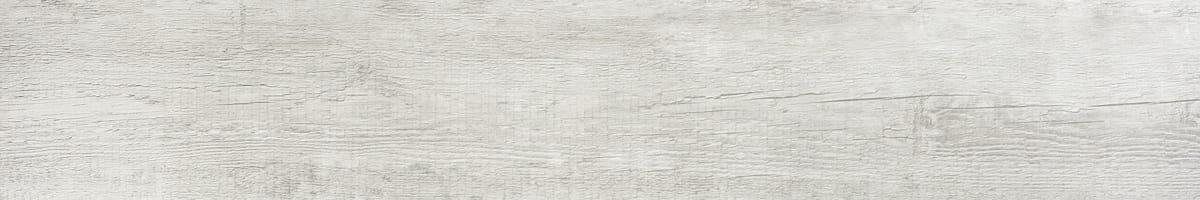 FOTO autumn white ant 20x120
