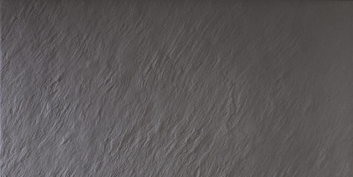 FOTO project gris ant