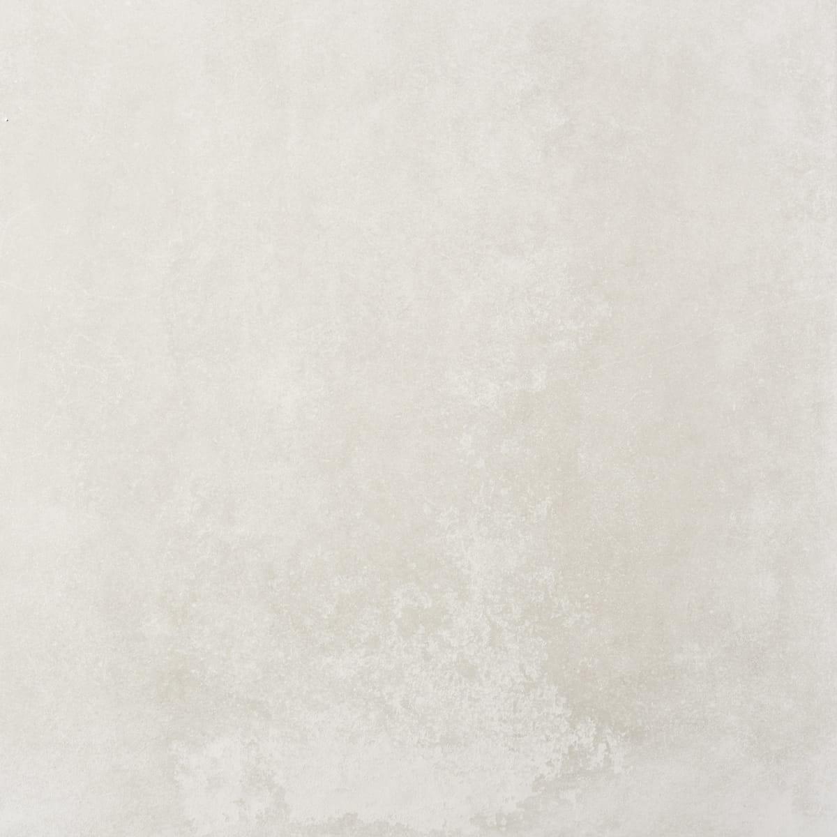 FOTO queens white ant 75x75 1